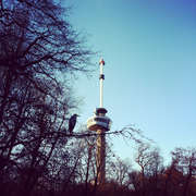 Euromast_2435205_featured